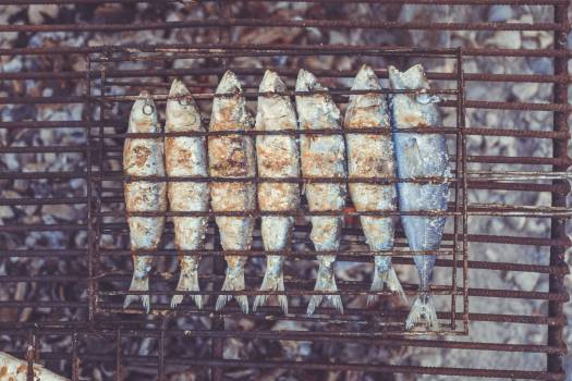grilled fish food Free Photo