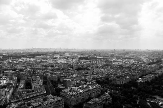 city aerial view #24205