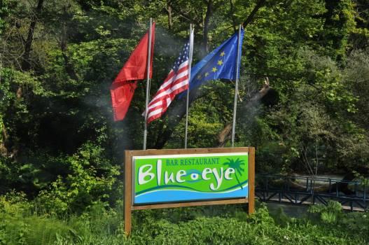 Flag Flagpole Emblem Free Photo