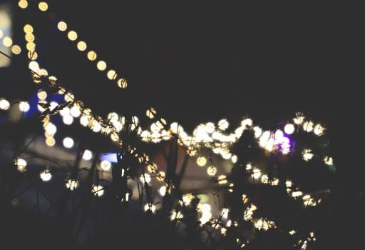 string lights night dark #24325