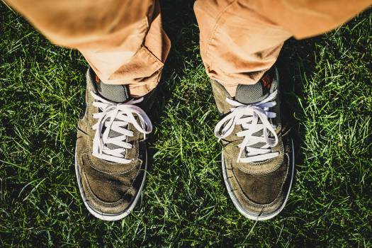 shoes sneakers laces Free Photo