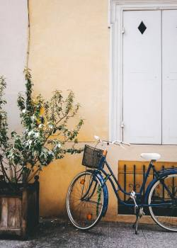 Tricycle Bicycle Wheeled vehicle #243734