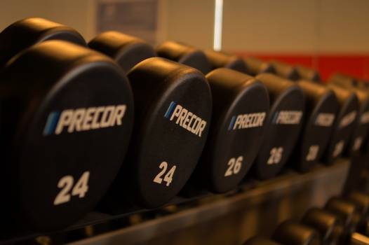 weights dumbbells gym Free Photo