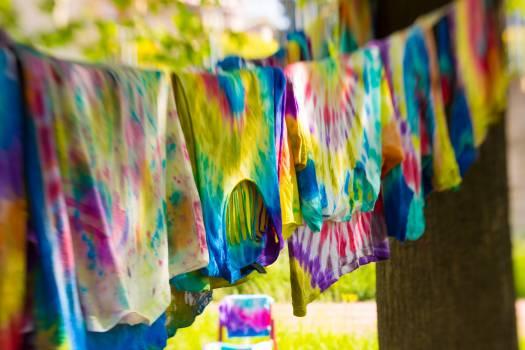 Pinwheel Colorful Wheel Free Photo