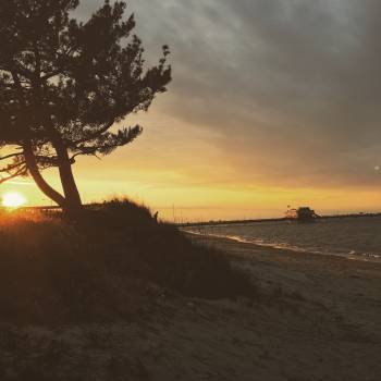 Sun Beach Sunset #245973