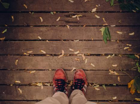 shoes laces wood Free Photo