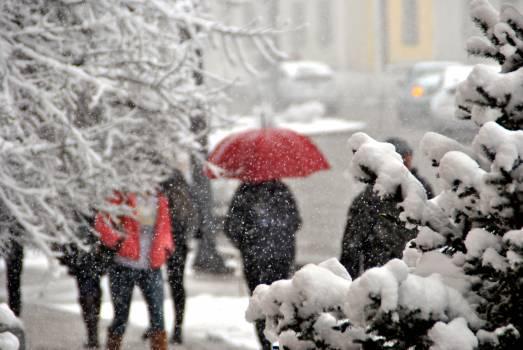 Snow Cartoon Winter #246087
