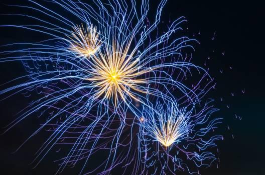 Firework July Explosive #246594
