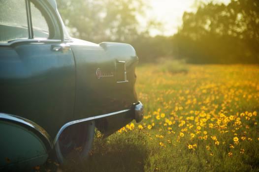car automotive vintage Free Photo