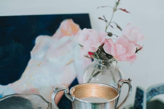 Cup Tea Beverage #246737