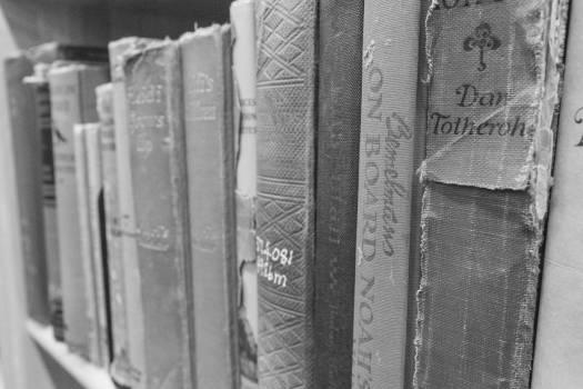 books reading study #24732