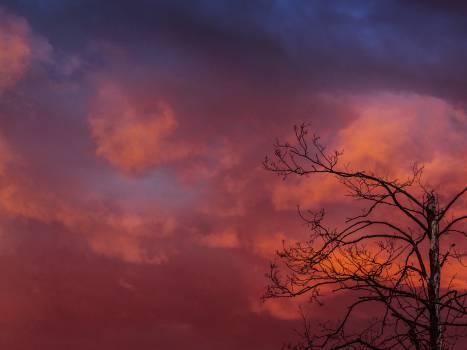 sky orange sunset Free Photo