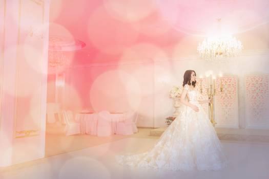 Groom Bride Wedding Free Photo