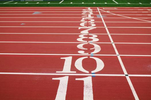Competition Sport Track Free Photo