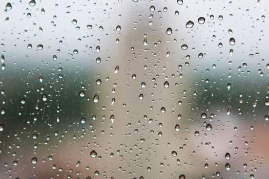 rain drops wet Free Photo