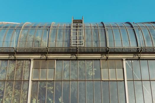 greenhouse plants industrial #24925