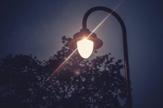 Lamp Light bulb Electric lamp #249394