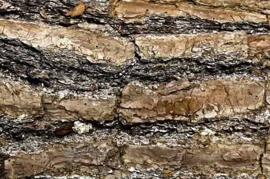 Stone wall Fence Wall #250135