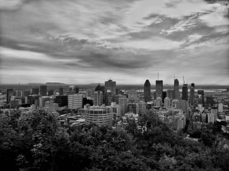 City Skyline Cityscape #250488
