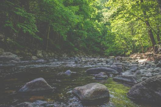 river water stream #25059