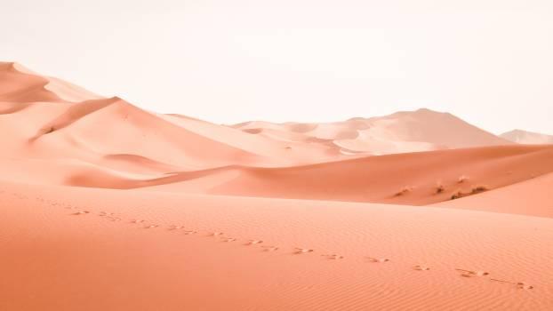Dune Sand Desert #250736