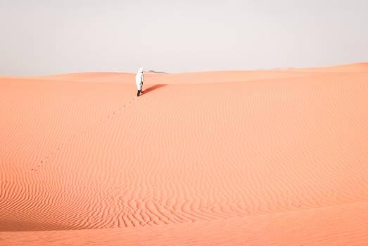 Dune Sand Desert #250739