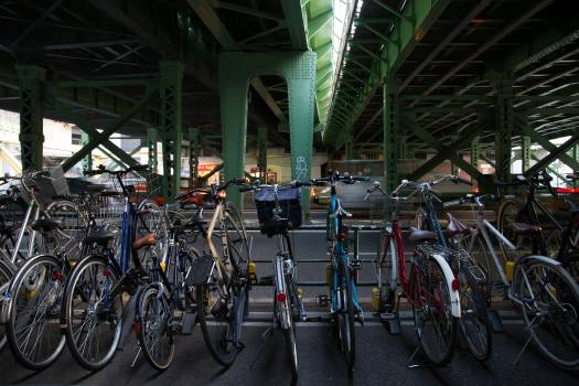 Bicycle Bike Sport Free Photo