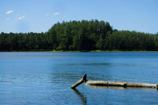 Sandbar Water Lake Free Photo