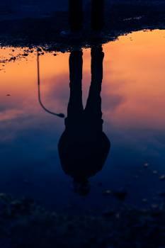 Hook Silhouette Catch #252340