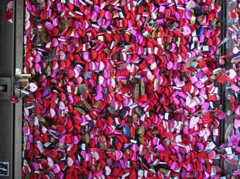 Lilac Pink Pattern Free Photo