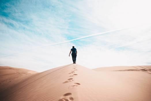 Dune Sand Desert #252659