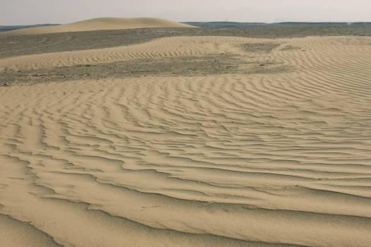 Dune Sand Soil #253434