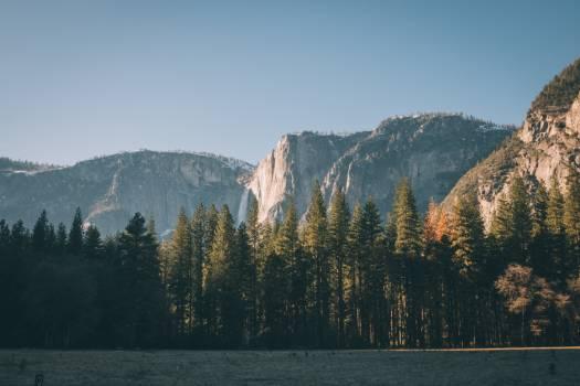 Mountain Valley Landscape #253745