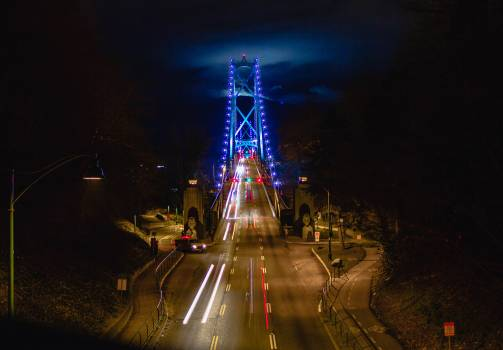 Bridge Suspension bridge Structure #253933