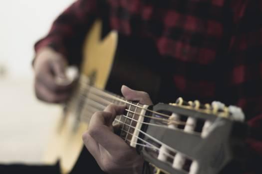 Guitar Bass Electric guitar Free Photo