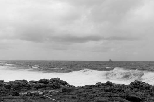 Ocean Sea Beach #254040
