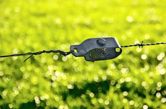 Device Key Clasp #254336