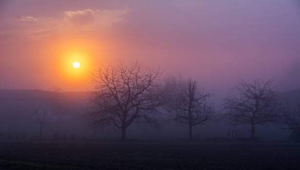 sunrise #25464