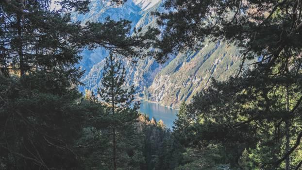 Mountain Alp Landscape #255604
