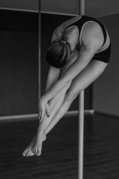 Gymnastic apparatus Pole-dance Model #25573