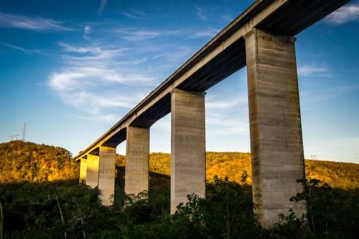 #322 - Under the Bridge #25593