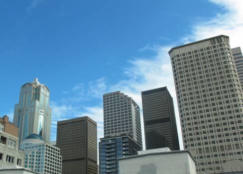 City Skyscraper Urban #256044