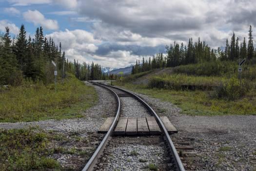 Track Road Landscape #256095