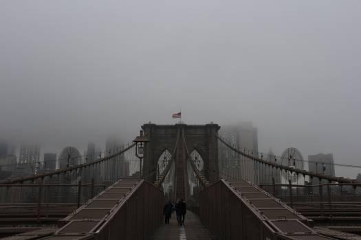 Bridge Suspension bridge Structure #256516