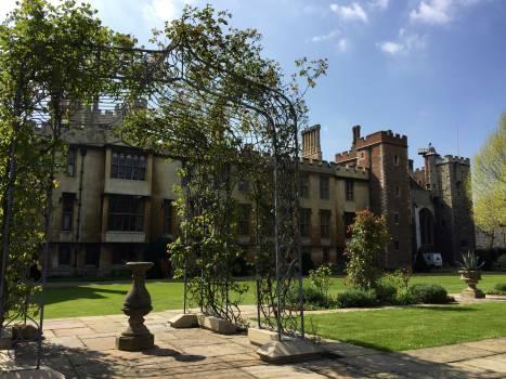 University Building College Free Photo
