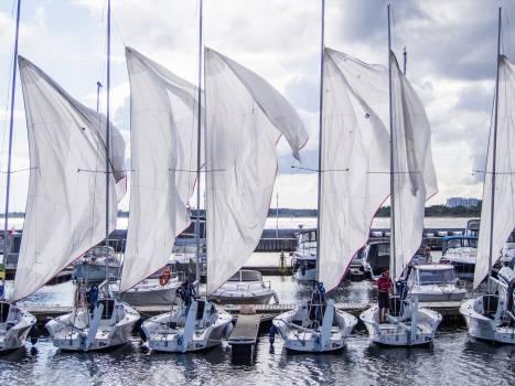 sails Free Photo