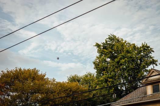 Balloon Free Photo