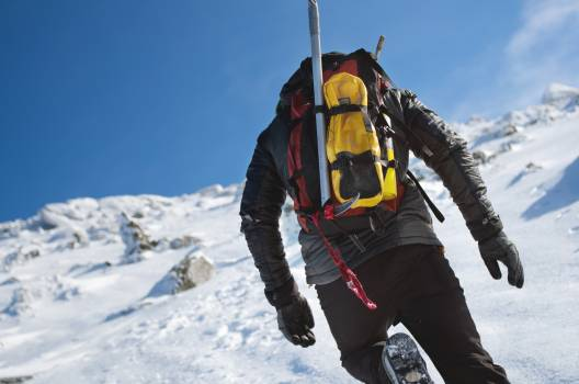 Ski Crampon Snow #259117
