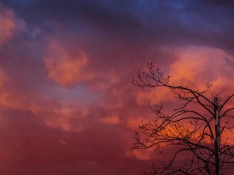 That sky! Free Photo
