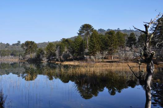 Landscape Lake Water #259389